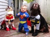 funny-baby-halloween-costume-ideas-6-desktop-background